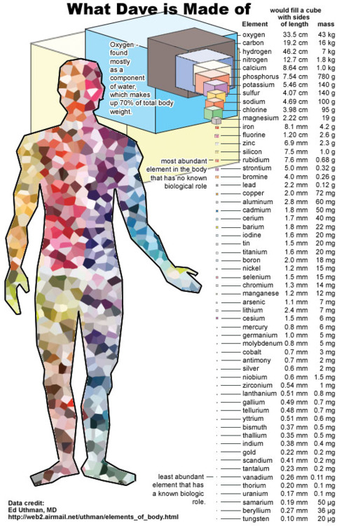 Look how many chemical elements are in humans!