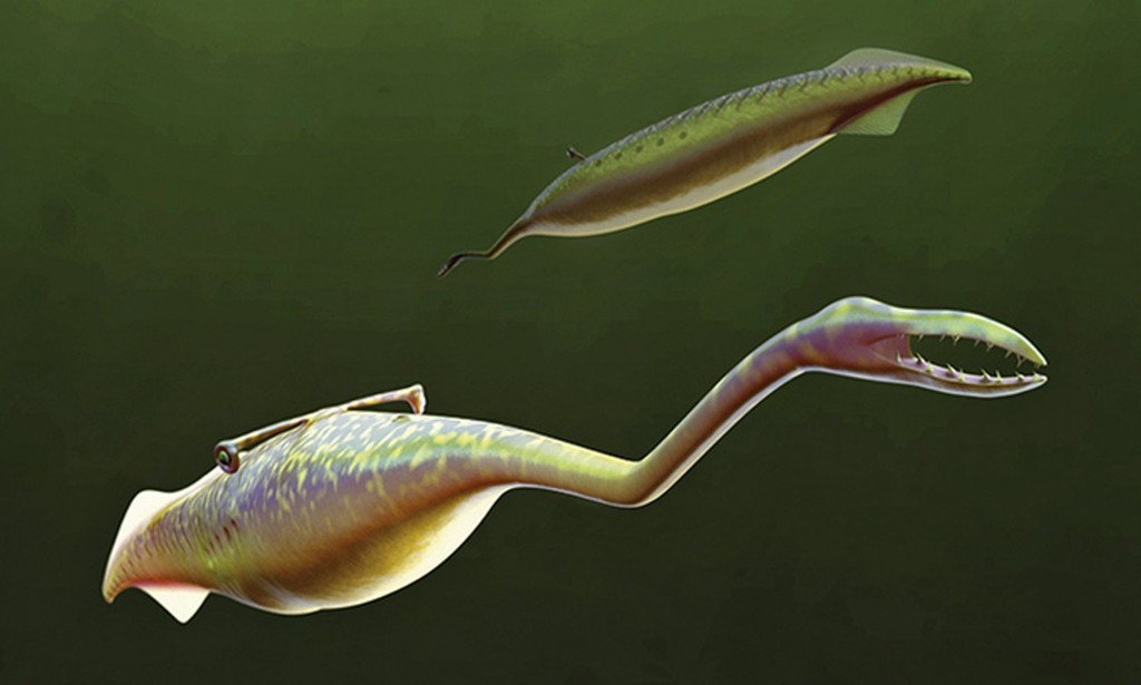 The Tully monster was definitely an unusual looking specimen. (Image: Reuters).