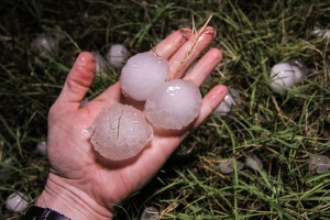 Sometimes hail can be surprisingly large. (Image: State Farm).
